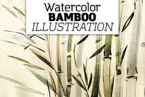 Watercolor bamboo illustration.