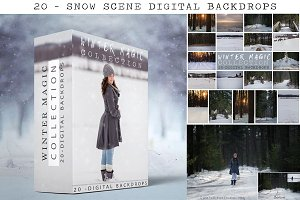 20- Snow Digital Backdrops - Winter