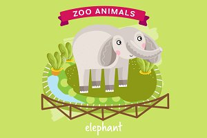 Zoo Animal, Elephant
