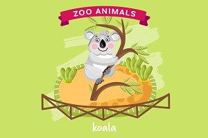 Zoo Animal, Koala