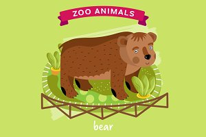 Zoo Animal, Bear