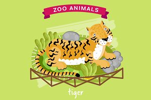 Zoo Animal, Tiger