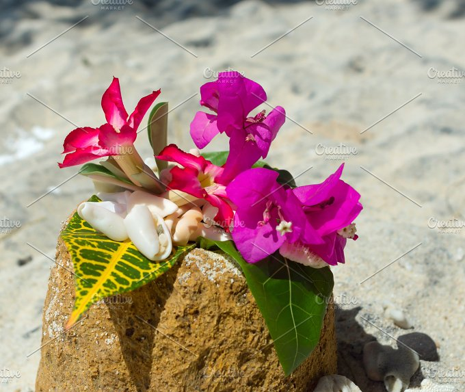 Collage of shells and flowers on the stown.jpg - Photos