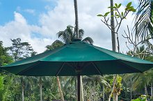 Cafe with view to elephants.jpg