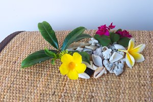 Frangipani flower and yellow flower with white seashells.jpg