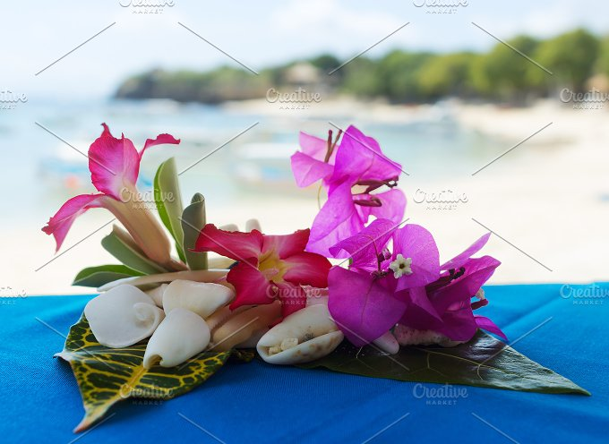 Collage of white shells and red flowers on the beach.jpg - Photos