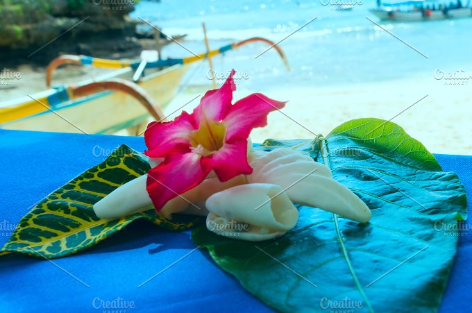 Collage of shells and flowers on the table.jpg - Photos