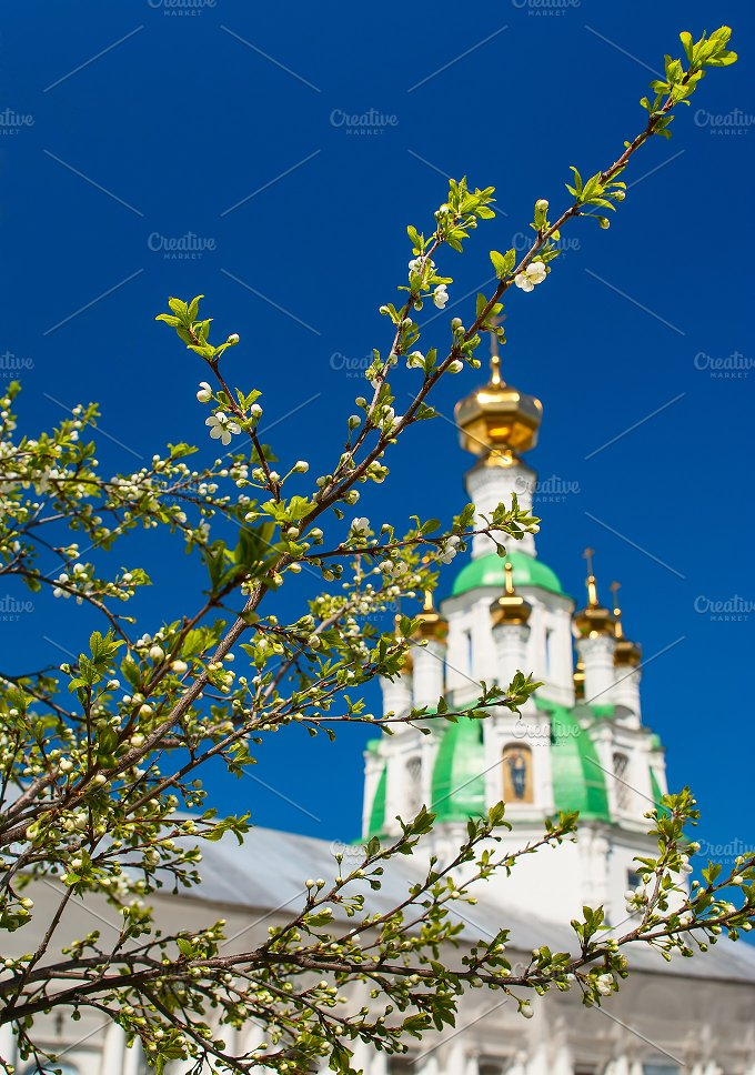 Branch of the cherry blossoms against white church.jpg - Nature
