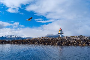 Lighthouse on the island in Norwegian sea.jpg