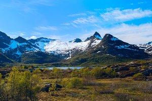 Norwegian high mountain pass in sunny summer day.jpg