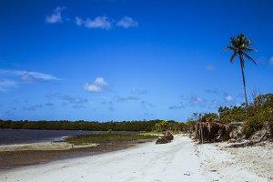 Desert Island | Brazil coast