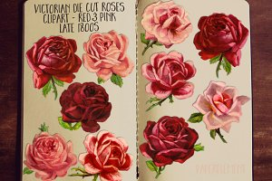 Pink & Red Rose Clipart Flowers