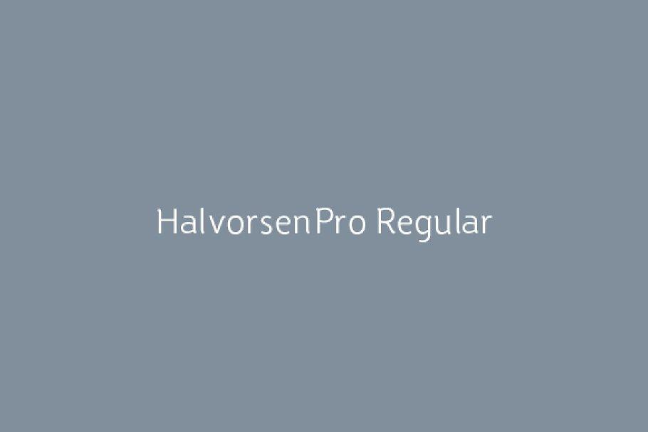 HalvorsenPro Regular