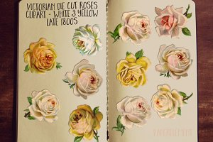 Yellow & White Rose Clip Art Flowers