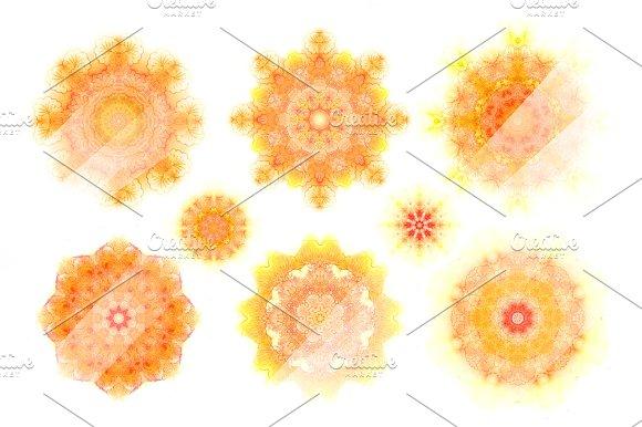30 watercolor  floral rosettes