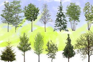 Exterior Visualisation trees