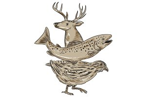 Deer Trout Quail Drawing