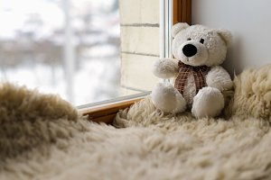 Teddy bear sitting near window