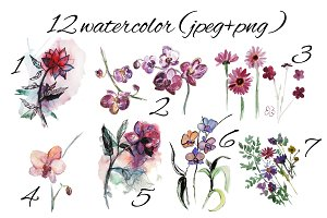 Watercolor flowers/jpeg/png.