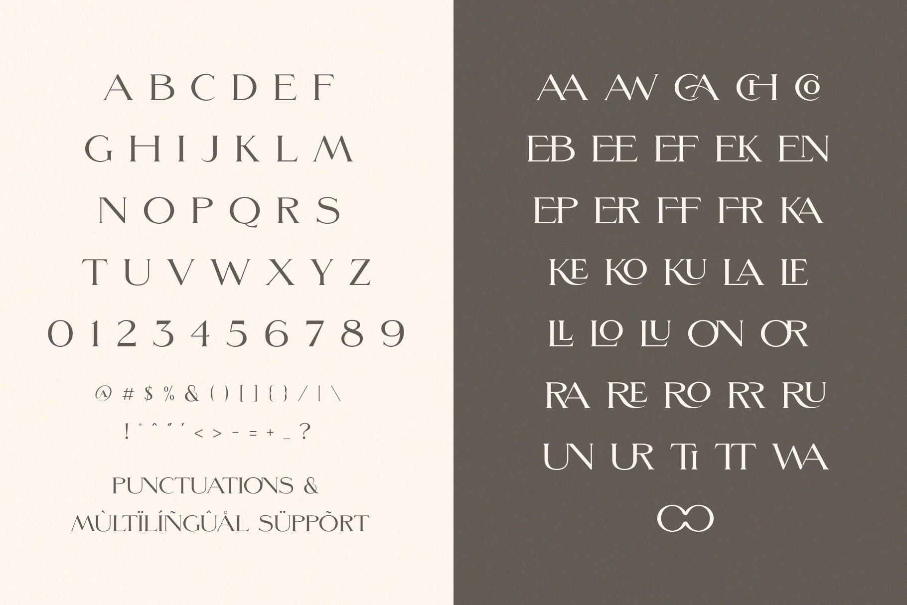 ligatures ligature font minimalist font display font classy font elegant font serif wedding font modern font logo font fashion social media modern serif 9 11
