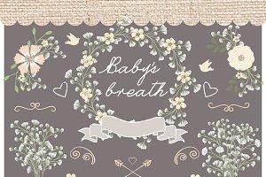 Vector baby breath clip arts