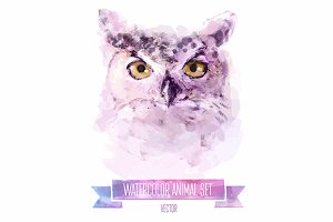 Watercolor set of animals | Owl