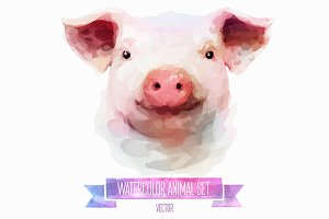 Watercolor set of animals | Pig