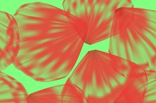 Red petals on green background