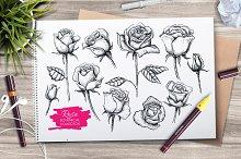 Hand Drawn Roses. Vintage set.