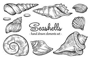 Seashells design elements set lite