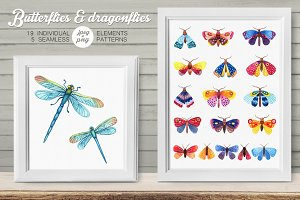 Watercolor butterflies & dragonflies