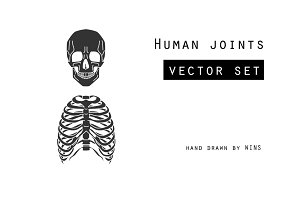 Human joints vector set