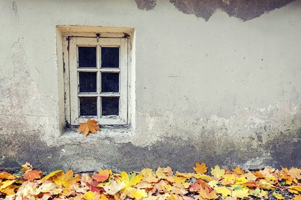 Old window at autumn