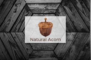 [68% off] Natural Acorn Logo