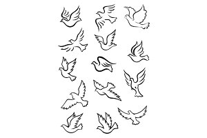 Outline graceful dove and pigeon bir