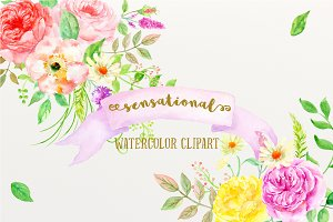 Watercolor clipart Sensational