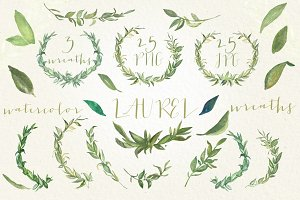 Laurel foliage wreaths. Watercolor.