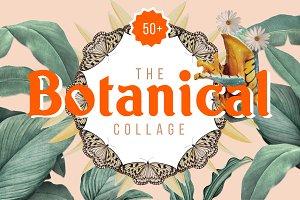 Botanical Collage Art Maker Elements