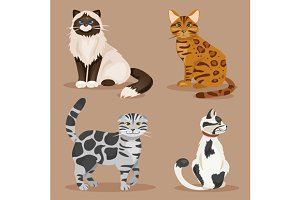 Set of cats. Vector Illustration