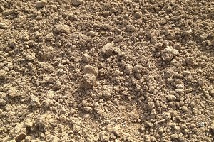 Dry Ground - Texture