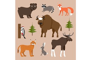 Wild animals. Vector Illustration