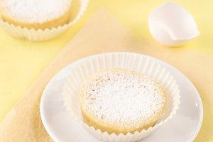Sugar Milk Cakes