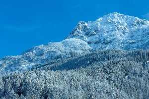 Winter mountain(Austria, Tirol)