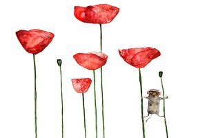 Little mouse loves poppies