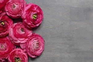 Ranunculus background