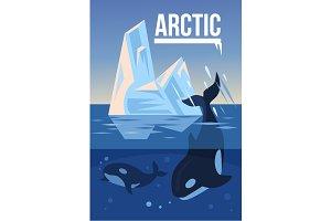 Arctic banner