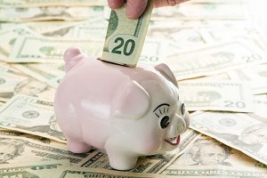 Savings into piggy bank $20 bill
