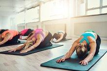Women stretching in gym class