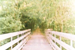 Vision walkway