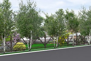 Property line landscaping